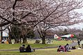 Japan 300316 Tokorozawa C-46 03.jpg