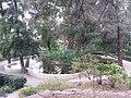 Jardín de Monforte 91.jpg