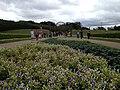 Jardim Botânico - Curitiba PR - panoramio (2).jpg