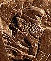 Jehu on the Black Obelisk of Shalmaneser III.jpg