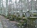 Jewish Cemetery in Sopot - panoramio (2).jpg