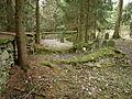 Jewish cemetery in Košetice (12).jpg