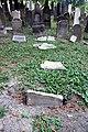 Jewish cemetery in Libochovice, 08-2012, 05.JPG