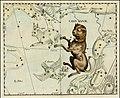 Johannes Hevelius - Canus Major.jpg