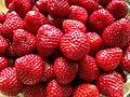 Jordbær (9078544490).jpg