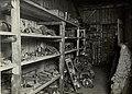 K.u.k. Kraftwagen Werkstätte in der Cellulosefabrik Villach. Werkstättenmuseum für zerbrochene und abgenützte Kraftwagenbestandteile (BildID 15468312).jpg