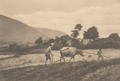 KITLV - 101104 - Kleingrothe, C.J. - Medan - Ploughing with buffaloes, presumably at Lake Toba in Sumatra - circa 1905.tif