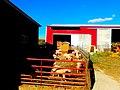 Kalscheur Family Farm - panoramio (3).jpg
