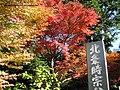 Kamakura Autumn - panoramio.jpg
