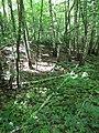 Kaniv Nature Reserve (May 2018) 57.jpg