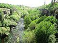 Kasagh River.JPG