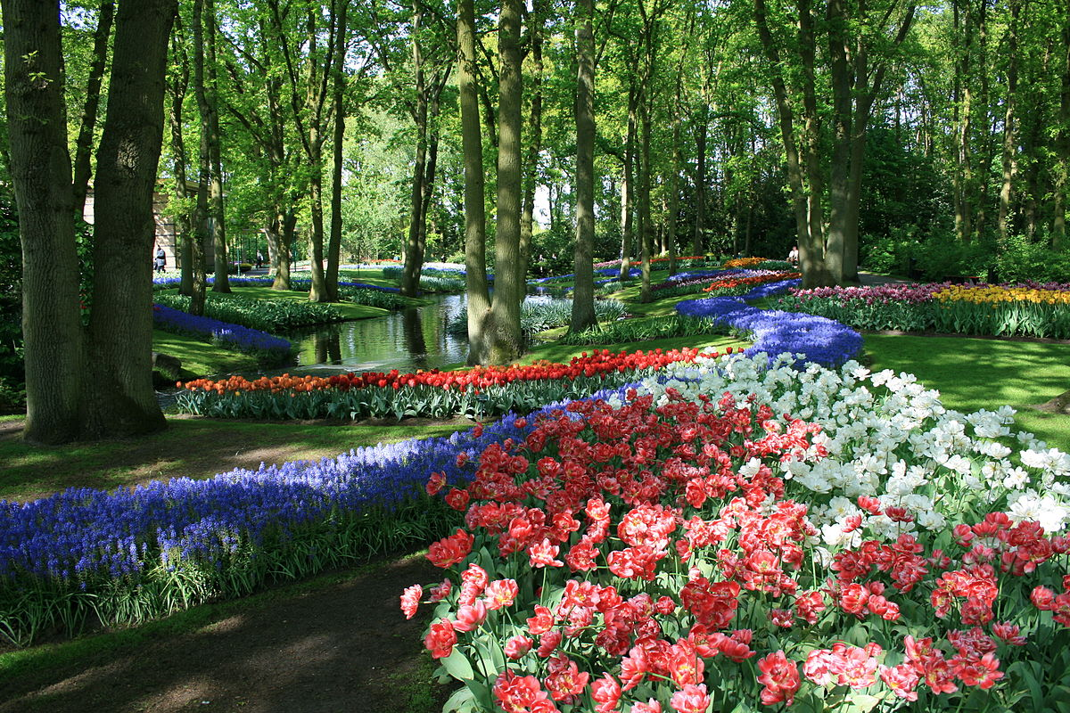 Keukenhof wikipedia for Beautiful garden images hd
