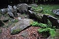 Kilmashogue Megalithic Site 3.JPG