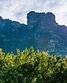 Kirstenbosch National Botanical Garden, Cape Town (P1060028).jpg