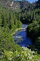 Klamath River (27694156513).jpg