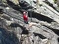 Klettersteig Lehner Wasserfall - panoramio (11).jpg