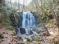 Kolešino Waterfall 2018 (1).jpg