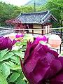 Korea-Busan-Beomeosa-07.jpg