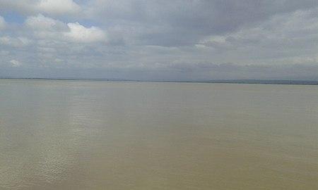 Koshi river from koshi tappu.jpg