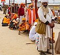 Kumbh Mela 2019, January 15 - March 4 (46344544625).jpg
