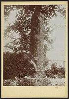 La colonne des naufragés de Braud-et-Saint-Louis - J-A Brutails - Université Bordeaux Montaigne - 0828.jpg