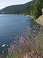 Lake McDonald - panoramio.jpg