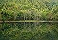 Lake Toyoni 2010 - panoramio.jpg