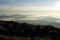 Lake Yamanaka from Mt.Fuji 03.jpg