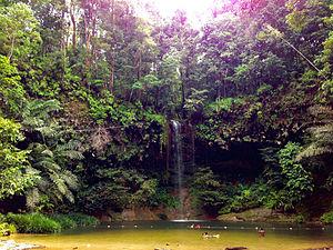 Lambir Hills National Park - Lambir Hills Waterfall.