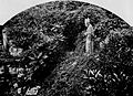 Landévennec statue de saint Corentin dans les ruines de l'abbaye (1903).jpg