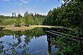 Landštejn - panoramio - Tomas Lollky.jpg