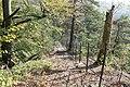 Landschaftschutzgebiet Striegistal (6).jpg