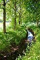 Landschaftsschutzgebiet Gütersloh - Isselhorst - Krullsbach (1).jpg