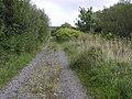 Lane, Errif - geograph.org.uk - 1482694.jpg