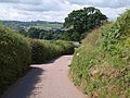 Lane to Chettiscombe - geograph.org.uk - 1395971.jpg