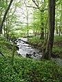 Langholme Beck - geograph.org.uk - 170273.jpg