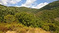 Le Lavandou, France - panoramio (47).jpg