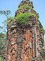 Les Temples Cham de My Son (4399062787).jpg