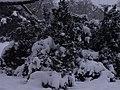 Letenské sady - panoramio (138).jpg
