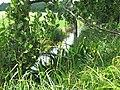 Lichtenower Mühlenfliess 06.jpg