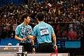 Lin Gaoyuan Fan Zhendong ATTC2017 11.jpeg