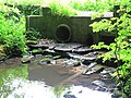 Little Beck - geograph.org.uk - 1373209.jpg