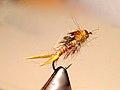 Little Yellow Stonefly nymph.jpg
