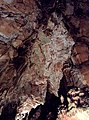 Lovech Province - Yablanitsa Municipality - Village of Brestnitsa - Saeva Dupka Cave (11).jpg