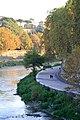 Lungotevere pedonale visto dal Ponte Palatino - panoramio.jpg