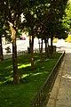 MADRID A.V.U. JARDIN-CINTA S. FRANCISCO EL GRANDE - panoramio (14).jpg