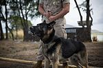 MCB Hawaii guarded by finest, furriest 150414-M-TM809-006.jpg