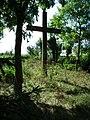 MOs810 WG 19 2019 Skockie Ogonki (evangelical cemetery in Sarbia, pow. wagrowiecki) (4).jpg