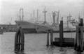MS Leapaul und MS Trautenfels im Hamburger Hafen - 1965.png