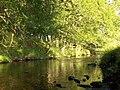 Machany Water - geograph.org.uk - 201687.jpg